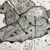 Mýtické zvíře ze skrvrny, Karolína Vašková, 9 let